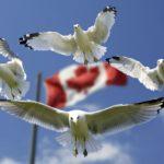 Иммиграционная программа в Канаду для квалифицированных предпринимателей